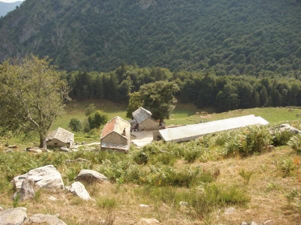 Ecomuseo Val Sanagra - Alpe Logone 03