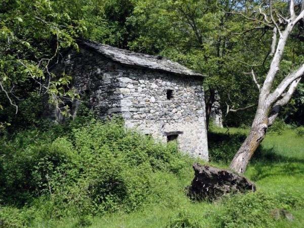 Ecomuseo Val Sanagra - Alpe Madri 03
