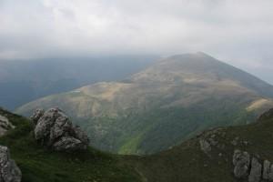 alpe-nesdale