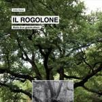 rogolone-storia-grande-albero