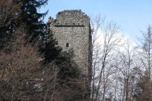 torre-codogna-03