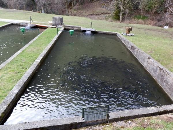 Ecomuseo Val Sanagra - Vecchia Chioderia - particolare vasca